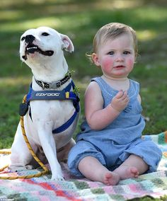 A linda amizade entre uma cadelinha de três patas e uma menina que nasceu com um braço apenas