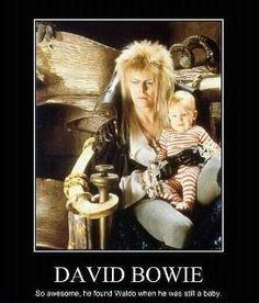 labyrinth memes | 20 notes Tags: David Bowie Labyrinth waldo jareth funny meme