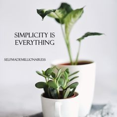 Successful Women, Everything, Planter Pots, Van, Instagram, Vans, Vans Outfit