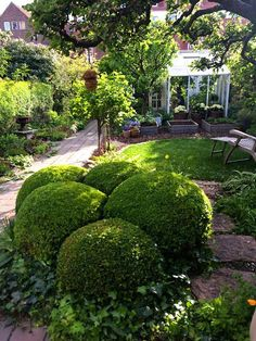 , 72 Beautiful Small Cottage Garden Ideas for Backyard Inspiration. , 90 Beautiful Small Cottage Garden Ideas for Backyard Inspiration Small Cottage Garden Ideas, Cottage Garden Plants, Garden Yard Ideas, Farm Gardens, Small Gardens, Outdoor Gardens, Backyard Ideas For Small Yards, Shade Garden, Dream Garden