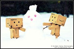 Danbo's in the Snow