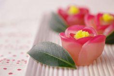 椿の和菓子  玉椿 と 八重椿 : ふつうのコト