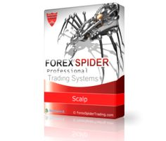 FOREX SPIDER Scalp