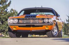 Learn All About The Muscle Cars World