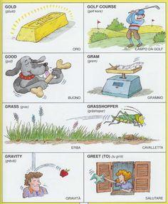 Learning Italian Language ~ Parole Inglesi Per Piccoli e Grandi - #Illustrated #dictionary - G2