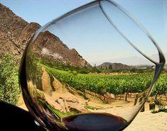 Ruta del vino, #BajaCalifornia