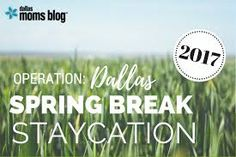 Go here - http://www.manufacturedhomerepairtips.com/whattodoonastaycation.php - to obtain some staycation ideas for the summer months for families, single people and couples.