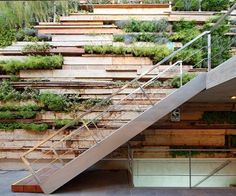 Vertical garden made from recycled wood - Zentro Office Building and Commercial, La Molina District, Peru - Gonzalez Moix Arquitectura via Archilovers