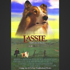 Movie Name: Lassie Excerpt: Lassie is probably the dog every other dog looks up to, if they watched movies. Lassie is pretty much the perfect dog and a classic story. You can't help but love her.  #bestpetmovies #movie #petmovie #petlove #timeforpet #movieoftheday #dog #dogs #dogmovies #dogmovie #lassie