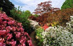 Scotney Castle Landscape Gardens (National Trust), Kent,