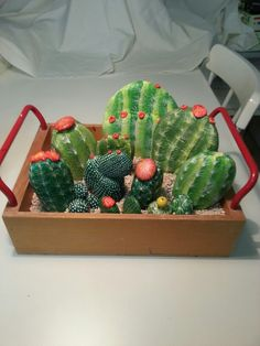 Hand painted rocks designed to look like desert cactus. What a great idea for an indoor cactus garden that doesn't require upkeep.
