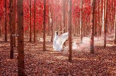 Moment Bride ♡♡ #ronnyvianafotografia #bride #flowerred #bosque #outono #noiva #Piracicaba #saopaulo #noivasaopaulo #casaamarela #Brasil #nikonTop #Nikon #moda #magazinebride #studioronnyviana #red #dress #eucaliptos #woman #fast #instalike #wedaward...