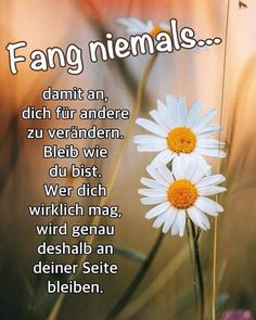 Have a nice afternoon, dear ones! - Have a nice afternoon, dear ones! Have A Nice Afternoon, Moving On Tattoos, German Language, Quotes About Moving On, Staying Positive, Dating Advice, Birthday Quotes, Life Is Beautiful, Affirmations
