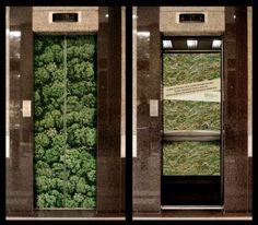 自然が豊かに残る森林が伐採されていく現状を伝え、環境破壊について考えさせる広告デザイン。 close-the-door-to-deforestation