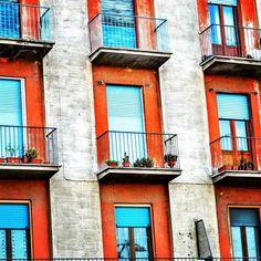 """Conformity"" #italia #italy #umbria #orvieto #architecture #windowsaroundtheworld #doorsandwindows  ##wp"