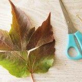 Puzzle z listí