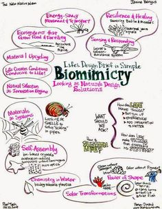 biomimicry... simple design inspired by nature