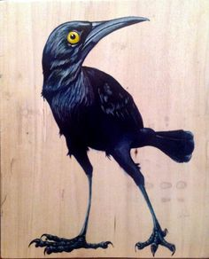 Black bird by Molly Brown