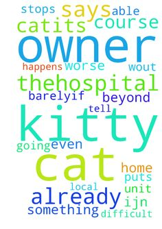 """Prayers for Kitty -      Please pray for """"Kitty"""" the cat.~its been a few days that she has barely--if at all eaten because her owner is    in the�hospital. ~please pray for her and for her owner too of course. (she is in the psychiatric unit of our    local hospital.)�they both need prayers now. I am worried because I don't know when she will be able to come    home and of course�the cat is only going to get worse w/out her. (she is alone…"""