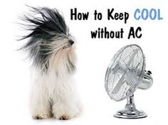 Image Result For Air Conditioner For Dorm Room | Air Conditioner For Dorm  Room | Pinterest | Dorm Room, Dorm And Room Part 90