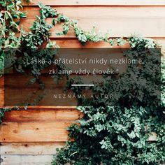 Láska a přátelství nikdy nezklame, zklame vždy člověk. -  Neznámý autor Motto, Quotes, Plants, Ideas, Author, Quotations, Qoutes, Plant, Quote