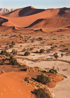 Morocco Travel, Africa Travel, Beautiful World, Beautiful Places, Deserts Of The World, Namib Desert, Out Of Africa, Amazing Nature, Beautiful Landscapes