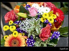 Flower Bouquet #RedFlowers #freewallpapers