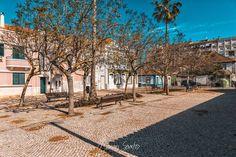 Abandoned square #hometown #portugal #barreiro #old #empty #photography #photographer #fotografo #fotografia #street #summer #shade