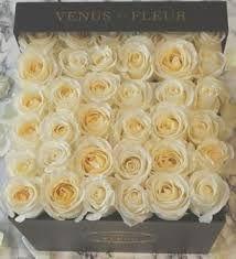29 Best Venus Et Fluer Images Flowers Flower Boxes Window Boxes