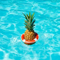Paloma Rincon - Fresh Compositions for Madrid's Summer Heat Wave – Fubiz Media Iphone Wallpaper Pineapple, Summer Of Love, Summer Fun, Photo Trop Belle, Tumblr Feed, I Need Vitamin Sea, Summer Wallpaper, Hd Wallpaper, Tropical Vibes