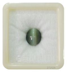 The Weight of Cat Eye Premium is about carats. The measurements are x width x depth). The shape/cut-style of this Cat Eye Premium is Oval. This carat Cat Eye Premium is available to order and can be shipped Cats Eye Stone, Cut And Style, Cat Eye, Shapes, Gemstones, Gin, Gems, Jewels, Jeans