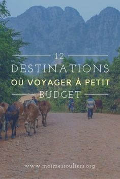 12 destinations to travel on a budget - 8 Women Travel Pictures, Travel Photos, Budget Travel, Travel Tips, Places To Travel, Travel Destinations, Budget Planer, Viewing Wildlife, Going On A Trip
