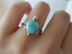 Old turtle obsession with new turquoise obsession! Perfect!