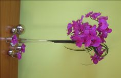 Google Image Result for http://pollenfloraldesign.com/wp-content/uploads/2010/02/modern-orchid-centerpiece.jpg
