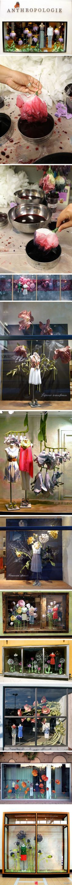 Enjoy the slightly quirky; the somewhat unexpected ( scale, colour, juxtaposition) Anthropologie windows.
