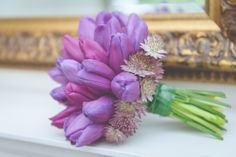 Bridal bouquet of purple prince tulips with a collar of Astrantia. Photography by Sugarbird photography, Yorkshire