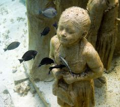 Underwater sculpture of a little girl will eventually create an environment attracting marine life, by allowing a reef to form.  In the meantime, the fishies are admiring it.