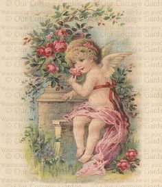 pictures of cherubs angels | Victorian CHERUB in a ROSE Arbor