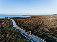 Explore, discover and be relaxed by nature when you visit the Creery Wetlands, a nature reserve in the Peel region. Kings Park, Waterfront Restaurant, Secret Places, Stay The Night, Nature Reserve, Get Directions, Walking Tour, Bird Watching