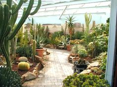 http://www.bing.com/images/search?q=beautiful retail  plant nurseries
