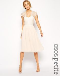 Image 1 of ASOS PETITE Scalloped Lace Midi Dress