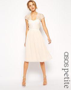 Image 1 ofASOS PETITE Scalloped Lace Midi Dress