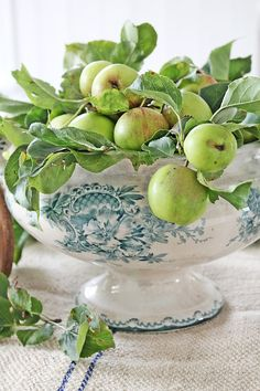 Bouquet de pommes .....