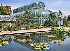 steinhardt conservatory brooklyn botanic garden palm house and reflecting pool - Brooklyn Botanic Garden