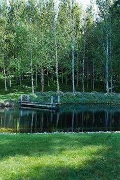 Garden A grove of birch trees lines the side of the man-made pond. As seen in the July issue of Country Style...
