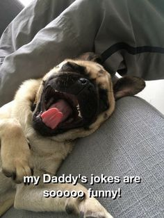 My daddy's jokes are the best.