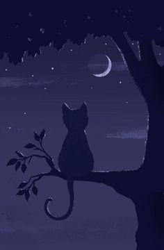Louise Gardner: Indigo for Cute Cat Wallpaper, Dark Wallpaper, Cute Wallpaper Backgrounds, Scenery Wallpaper, Cute Wallpapers, Animal Paintings, Animal Drawings, Shadow Painting, Black Paper Drawing