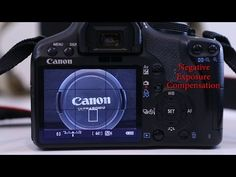 Exposure Compensation » How To Get Off the Green Auto Setting