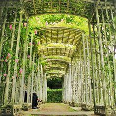 Parc de Bercy  http://en.wikipedia.org/wiki/Parc_de_Bercy
