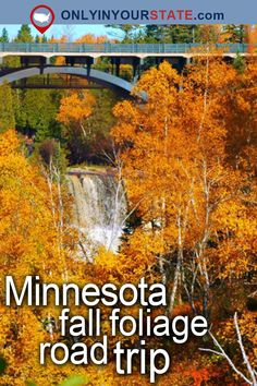 Travel | Minnesota | Attractions | USA | Places To Visit | Fall | Foliage | Road Trips | Autumn | Scenic Spots | Things To Do | Beautiful Places | Day Trips | Weekend Getaway | Scenic Drive | State Parks | Outdoor | Adventure | Natural Wonders | Nature | Explore | Forest | Gooseberry Falls | Waterfalls | Fall Foliage Road Trip